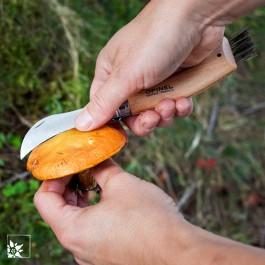 Das Opinel Pilzmesser im Wald in Aktion. (Lieferung ohne Pilz))