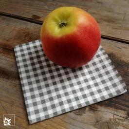 Diese Serviettengröße (25 x 25 cm) eignet sich gut als kleine Frühstücksserviette, für den kaffee oder z.B. auch bei Bewirtung von Gästen auf einem Messestand o.ä.
