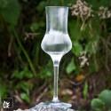 Grappa-Glas - Degustationsglas 6 Gläser